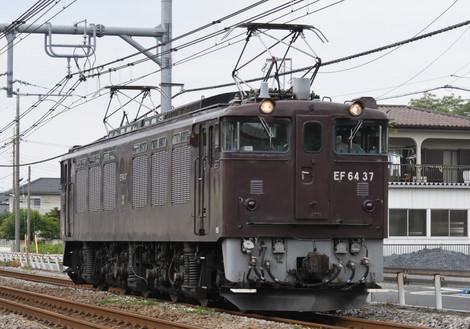 D50_7254