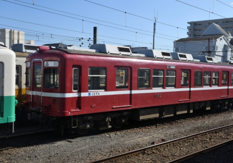 D50_0163