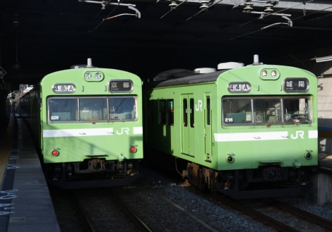 D50_0244