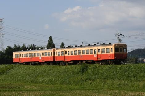 D50_8600